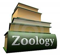 persons  who selected zoology or will select zoology as their optional are invited here to share their knowledge here
